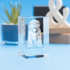 Pets Tower Crystal, 3D Engraved