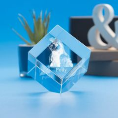 Pets Cube Crystal, 3D Engraved